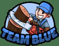 Team Blue LLC